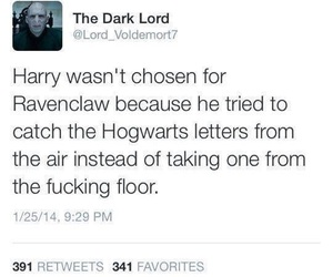 funny, lord voldemort, and harry potter image