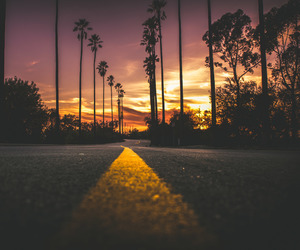 freedom, palms, and road image