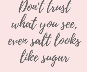 quote, salt, and text image