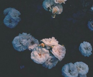 flowers, grunge, and indie image