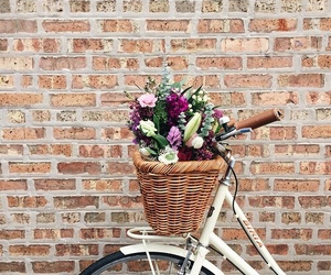 flowers, bike, and photography image