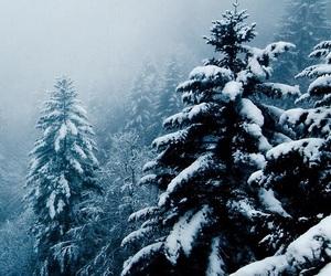 adventure, snow, and travel image