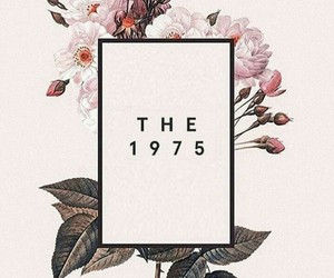 the 1975, pink, and wallpaper image