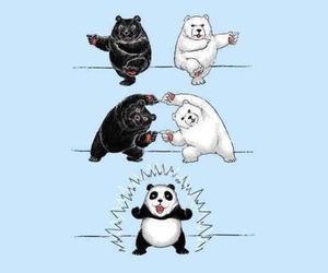 panda, bear, and funny image