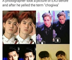 exo, meme, and kpop image