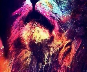 lion, galaxy, and animal image