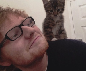 ed sheeran, cat, and ed image