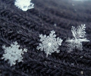 ice, snow, and time image