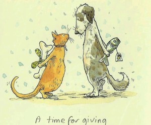 dog, cat, and gift image