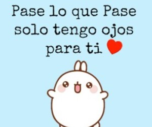 adorable, frases, and novios image