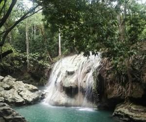 nature+, paradise+, and cascade+ image