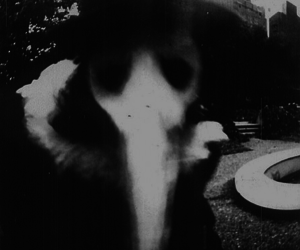 mask, black and white, and plague doctor image