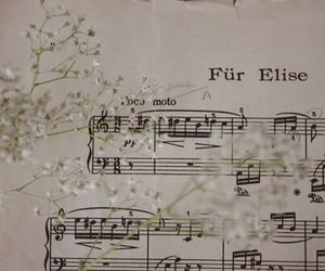 music, flowers, and piano image