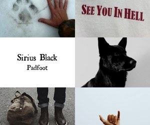harry potter, sirius black, and the marauders image
