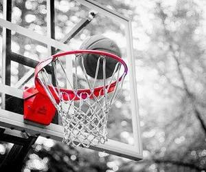 photography, Basketball, and sport image