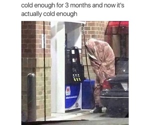 funny, meme, and winter image