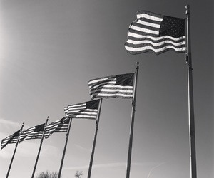 america, flags, and stars and stripes image