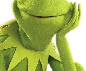 kermit, green, and muppets image