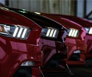 cars, ford, and mustang image