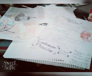 anatomia, escuela, and ❤ image