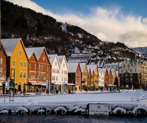 beautiful, bergen, and colours image