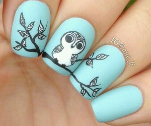 nails, owl, and blue image
