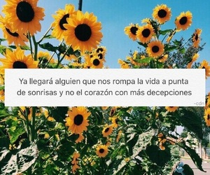 frases, love, and español image