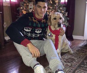 dog, boy, and christmas image
