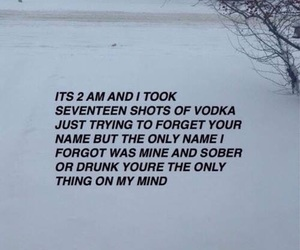 quotes, vodka, and drunk image