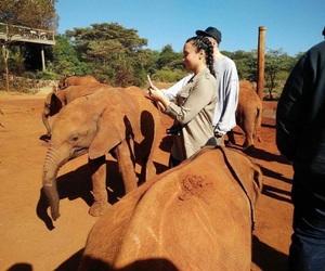 demi, demi in africa, and demi lovato image