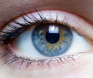 eye, eyes, and primal contacts image