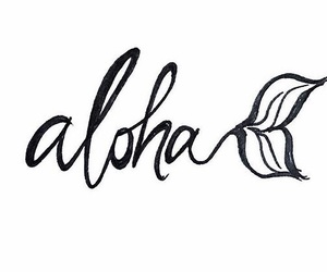 Aloha and hawaii image