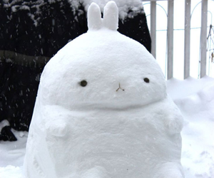 snow, winter, and molang image