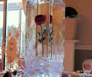 cold, ice, and rose image