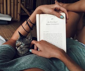 book, book lovers, and summer image