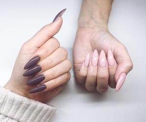 braid, cosmetics, and nails image