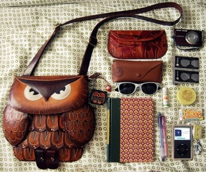bag, contents, and owl image