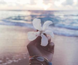 flower, beach, and girl image