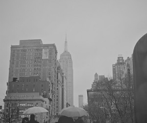 black and white, new york, and cute image
