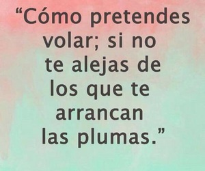 frases and volar image