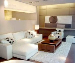 small living room and decorating ideas image