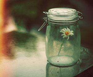 flowers, jar, and vintage image