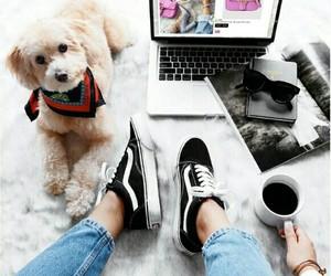 coffee and dog image