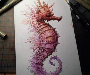 art, seahorse, and drawing image