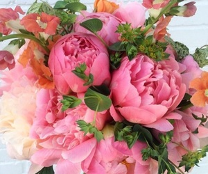 flowers, pink, and lové image