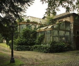 greenhouse, abandoned, and old image