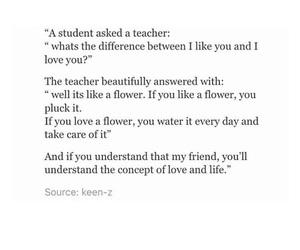 flower, lovely, and tumblr image