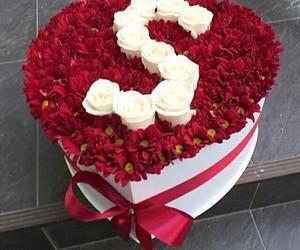 rose, s, and حروف image
