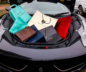 car, shopping bags, and Louis Vuitton image