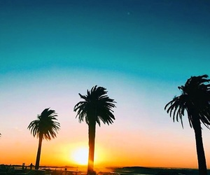 africa, palmtree, and sunset image